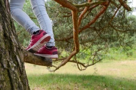 red trainers and legs climbing tree