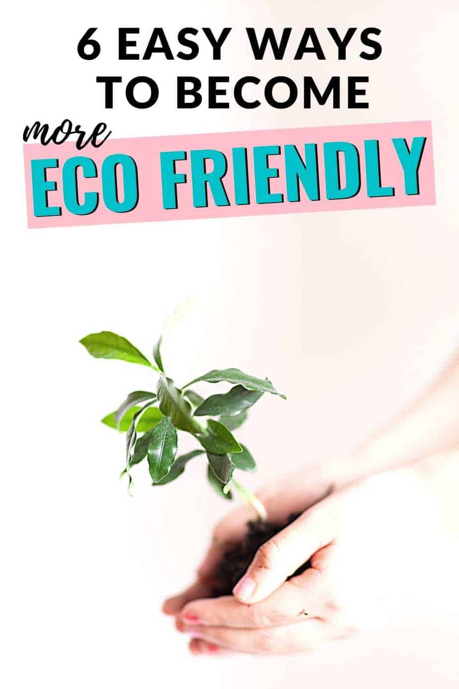 6 easy ways to become more eco friendly