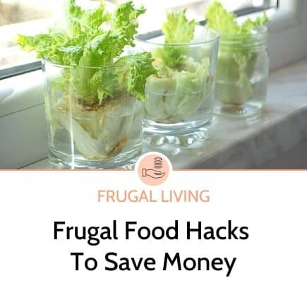 Frugal Food hacks to save money